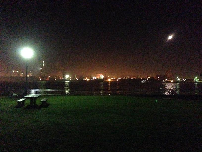 2014年11月30日 東扇島西公園 アジと…!