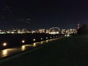 2014年12月8日 青海南ふ頭公園 セイゴ