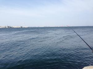 2015年4月26日 城南島海浜公園