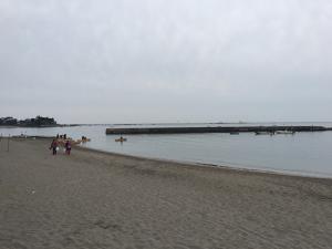 2015年5月4日 青海南埠頭公園で57cm!