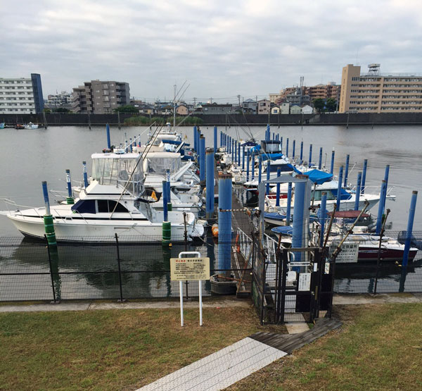2015年5月30日東京湾【船釣り】