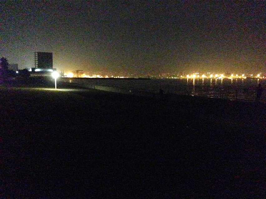 2015年10月10日 城南島海浜公園 メジナとか