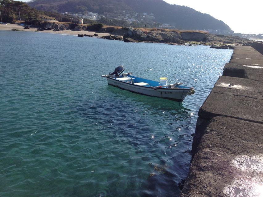 【湾外】2016年1月9日 葉山陸釣りポイント巡りツアー その2