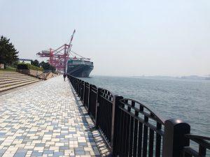 2016年5月4日 久々の城南島海浜公園でメジナは出るか!?